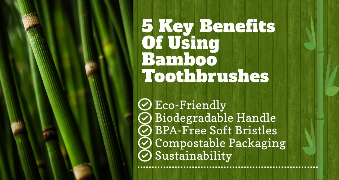 5 benefits of using bamboo toothbrushes