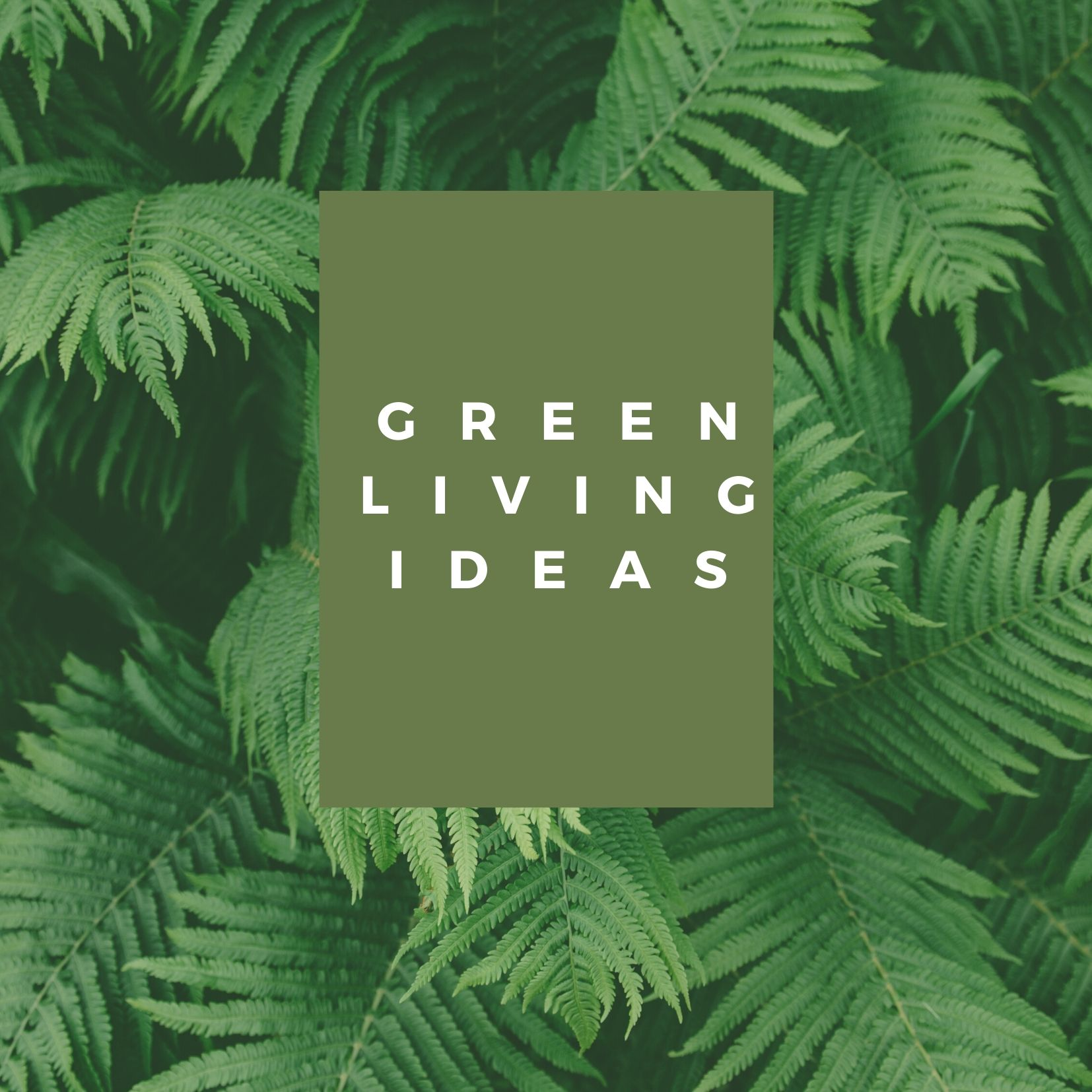 Simply Sustainable Living Ideas