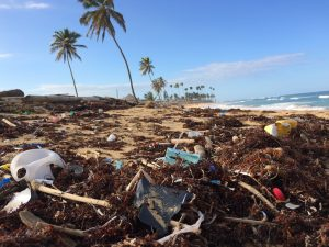 How to stop Plastic Pollution?
