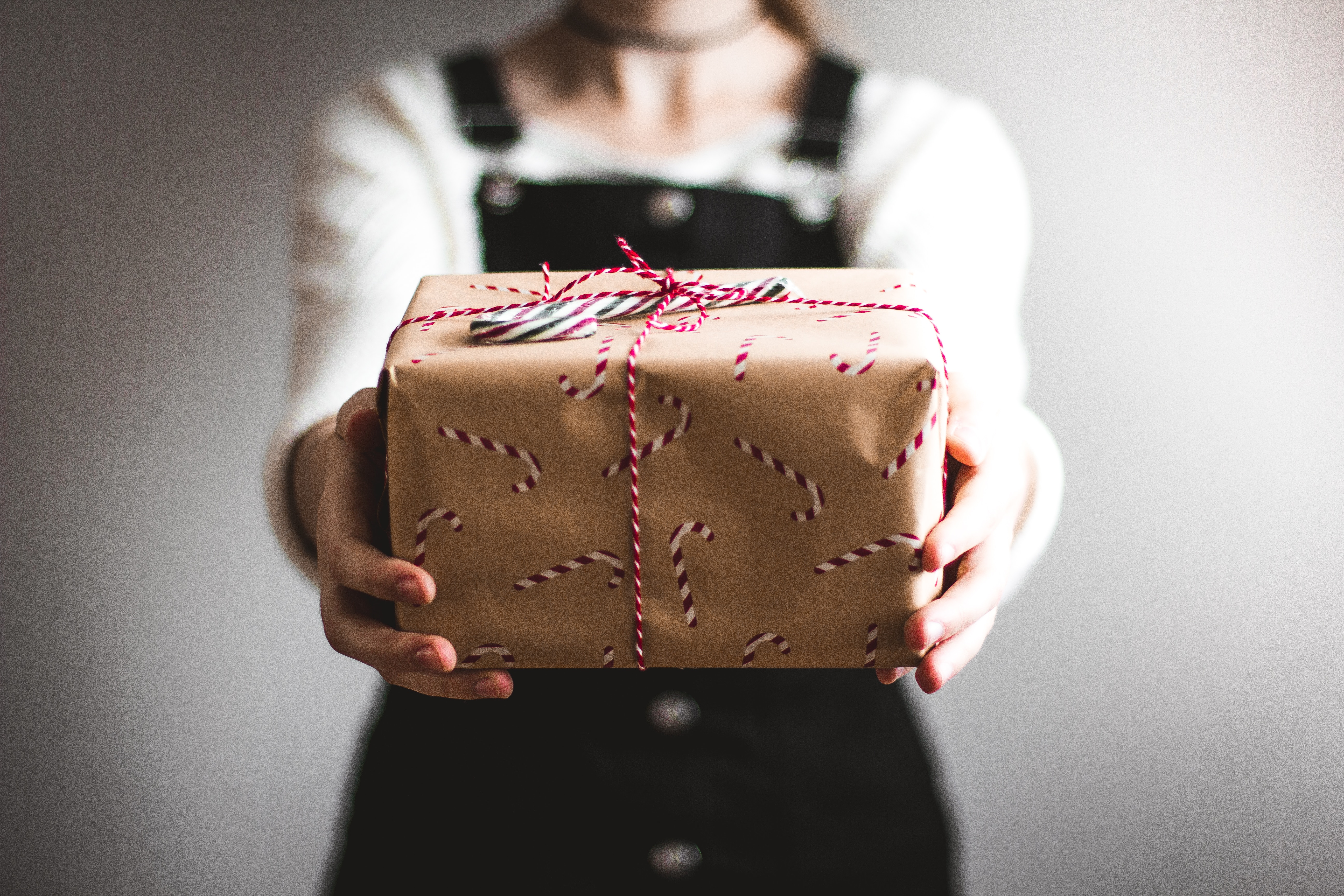 Read more about the article The Beginner's Guide to Eco-friendly Gifts