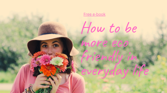 how to be more eco friendly in everyday life