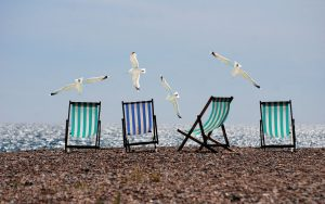 Read more about the article 5 Ideas for Eco Friendly Summer Fun