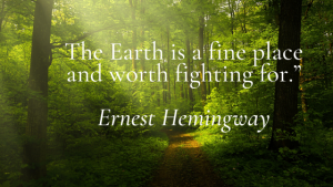 Read more about the article Get inspired to make the world a better – 21 Great  Environmental  Quotes