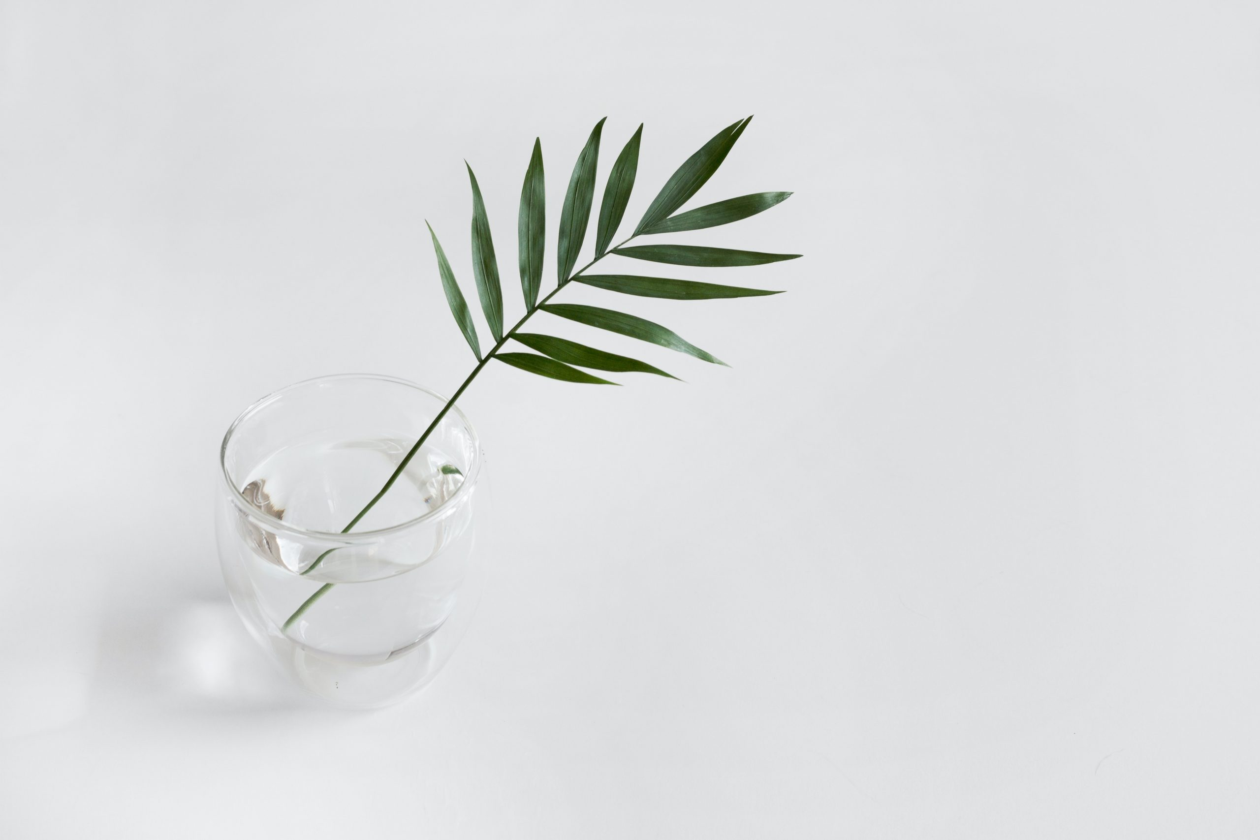 Read more about the article Minimalist Lifestyle
