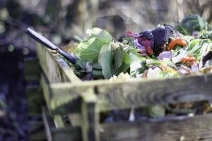 Read more about the article How to Get Started Composting at Home