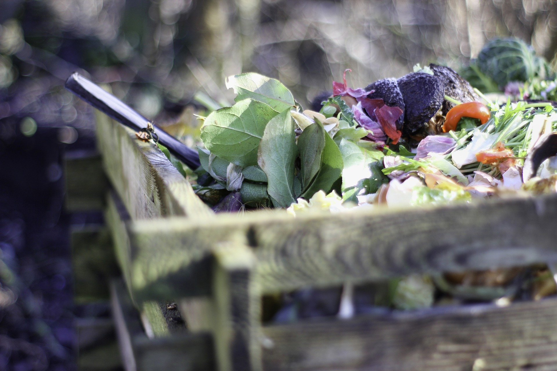 How to Get Started Composting at Home