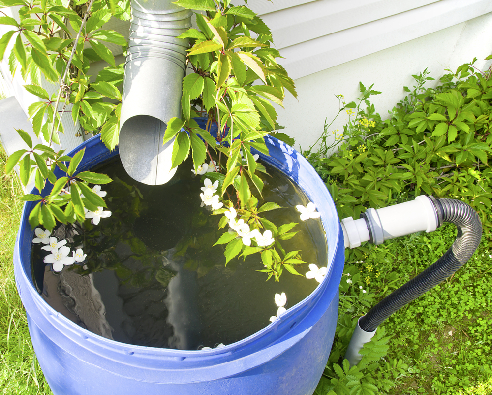 Drain the water from your roof