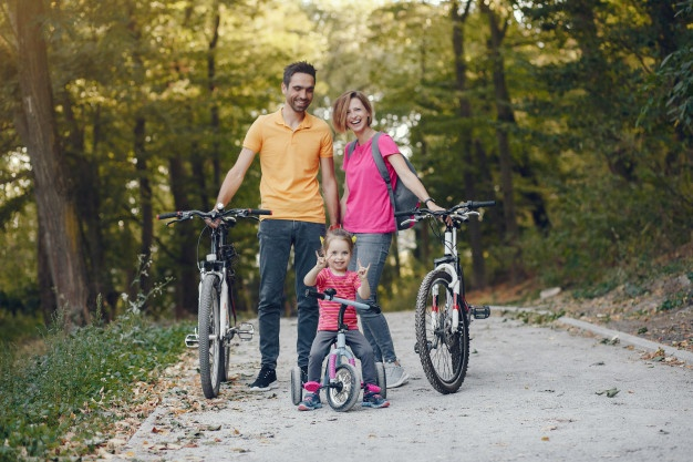 Buying Guide for Best Quality E-Bikes for Sales