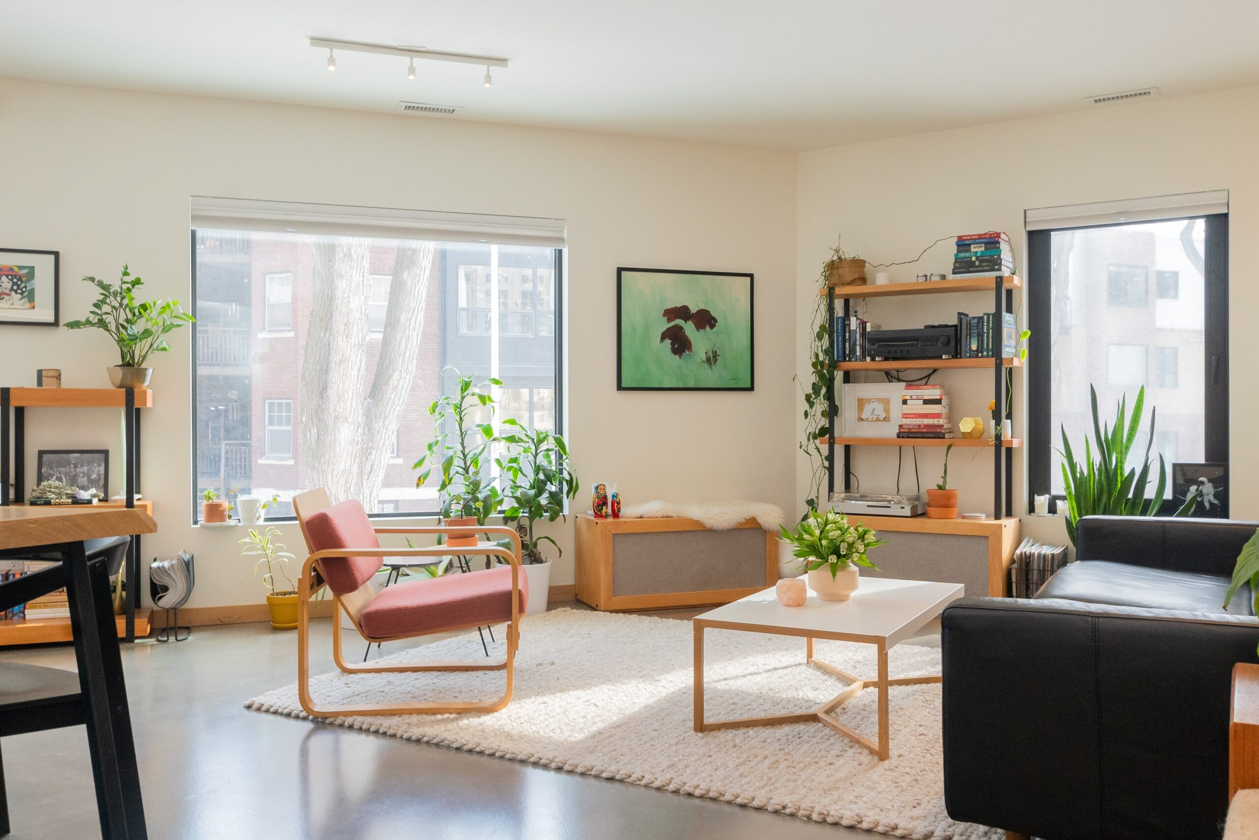 Going Green in Your Apartment