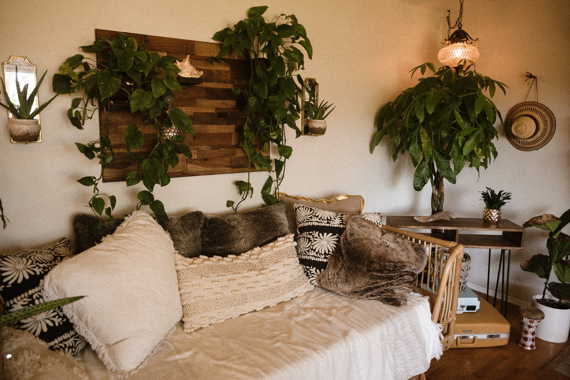 living room with green plant