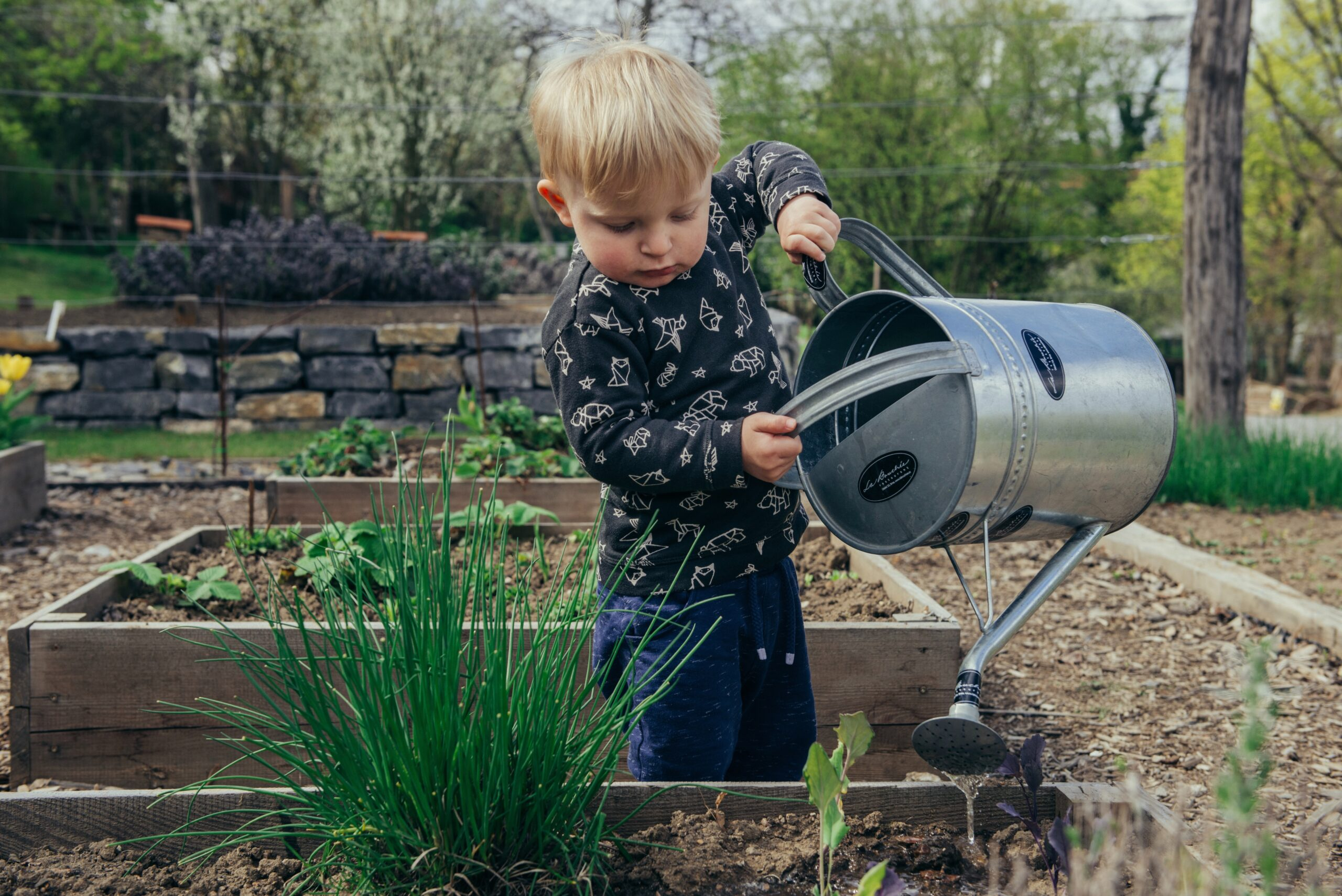 Getting Your Kids Excited About Sustainability
