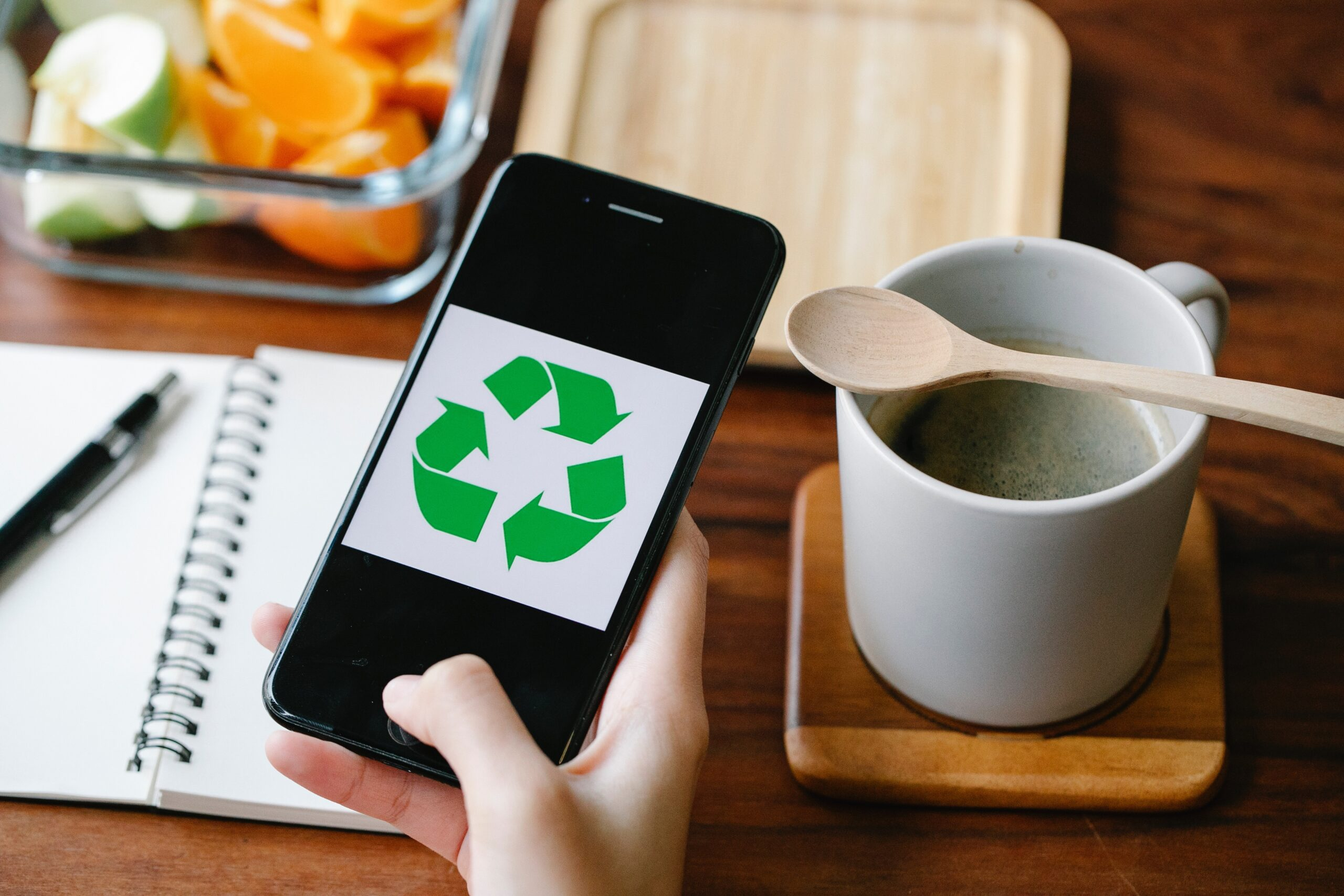Tips for Eco-Conscious Homeowners in 2021