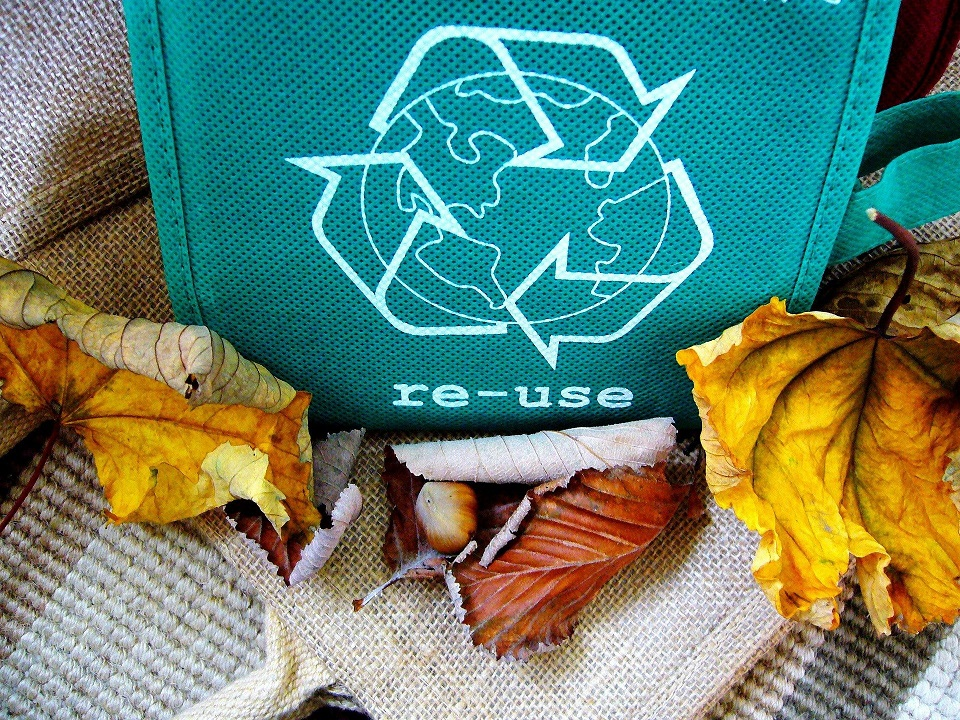Read more about the article 5 Ways My Family Has Reduced Our Waste-A Chronicle to Zero-Waste